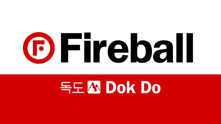 FireBall Dok Do Ceramic Sealant